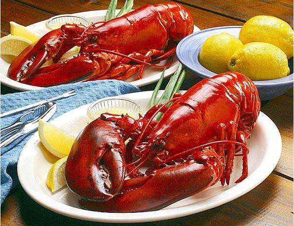 Lobster Termahal