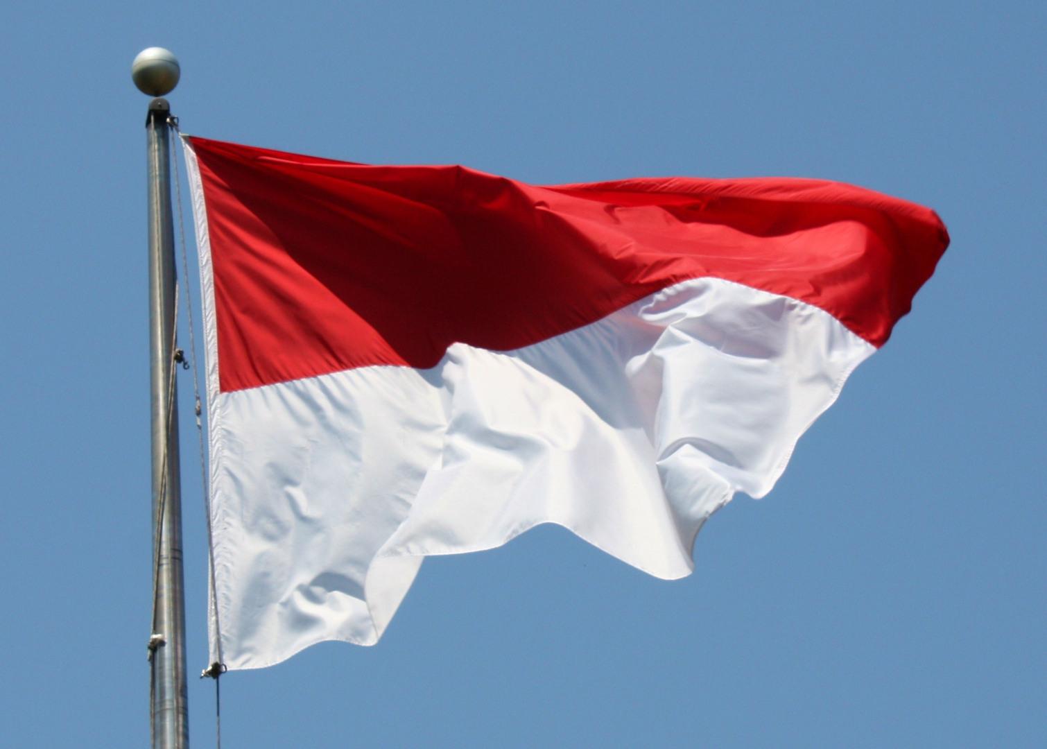 3 Negara Dengan Bendera Yang Sama Siapakah Yang Pertama Menggunakannya Jadiberita Com