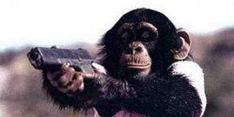 Tentara Taliban melatih monyet menembak