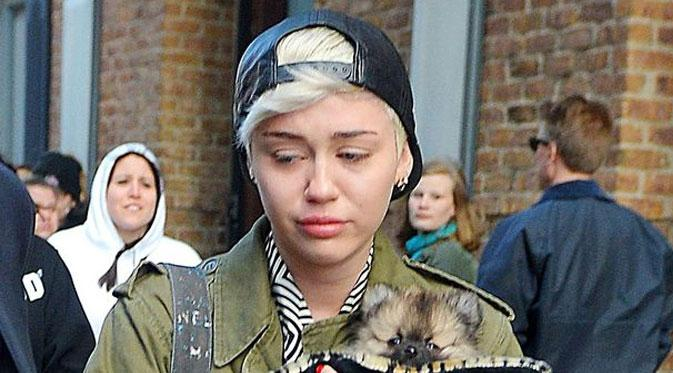 Miley Cyrus Masuk Rumah Sakit, Konser Batal