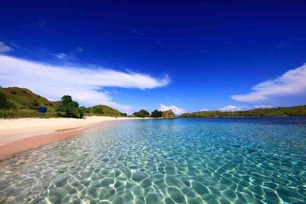 Cantiknya Pantai Merah Muda di Pulau Komodo