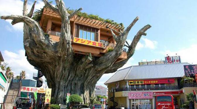 Makan di Restoran Atas Pohon, Mau Coba?