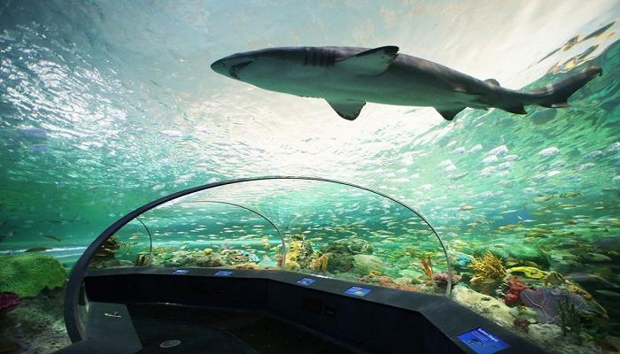 Ripleys Aquarium of Canada, Akuarium Terbesar di Kanada
