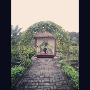 Gazebo di kebun dalam rumah Raline Shah