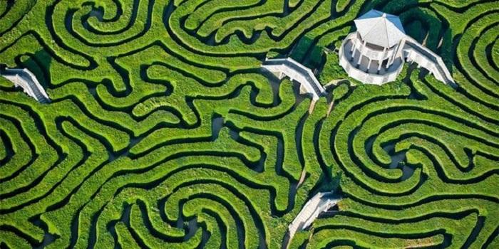 Longleat Hedge Maze, Labirin Paling Rumit di Dunia