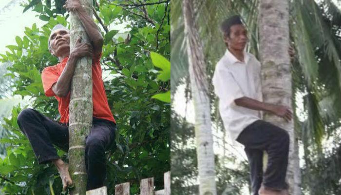 STORY: Kakek Rasmito, Tuna Netra Pemanjat Pohon Kelapa