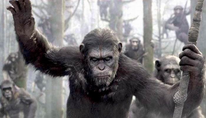 Planet of the Apes Masih Sisakan Lima Seri Lagi?