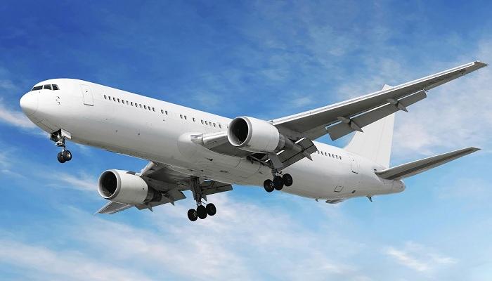 Penumpang Masturbasi, Pesawat Mendarat Darurat