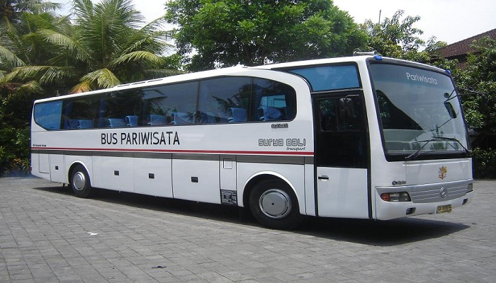 5 Tips Traveling Dengan Bus