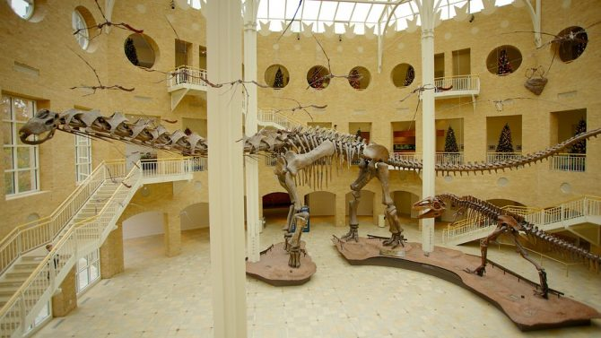 Fernbank Museum of Natural History  (img.cits.net)