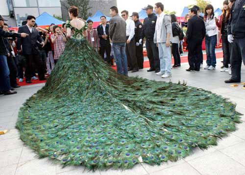 Gaun Pengantin Dari Bulu Merak (top10magz)