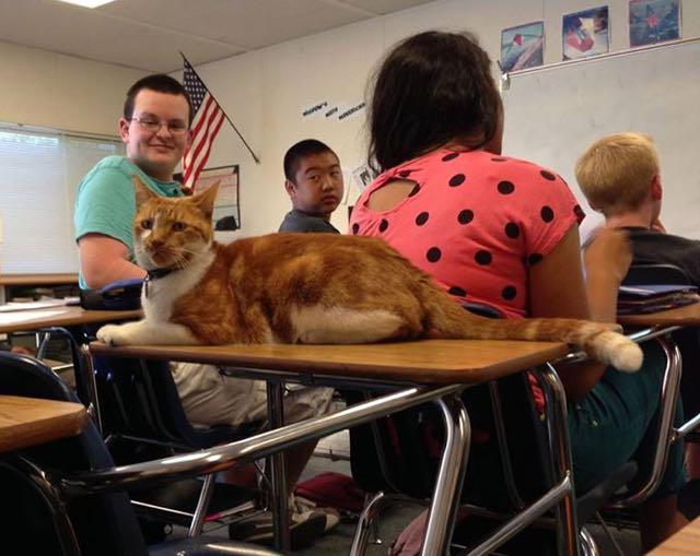 Bubba di dalam kelas (Facebook)