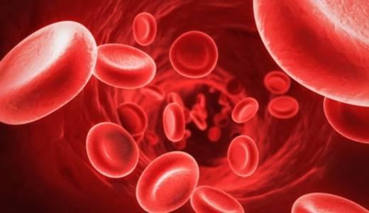 Ilustrasi darah (Memobee)