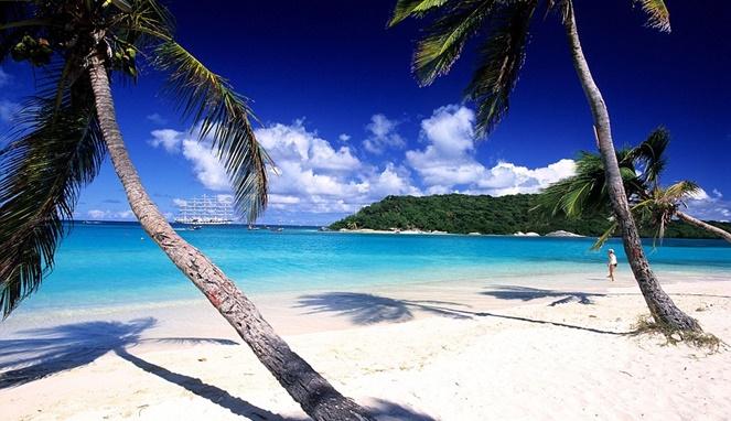 Pemandangan Saint Vincent and the Grenadines (Daily Mail)