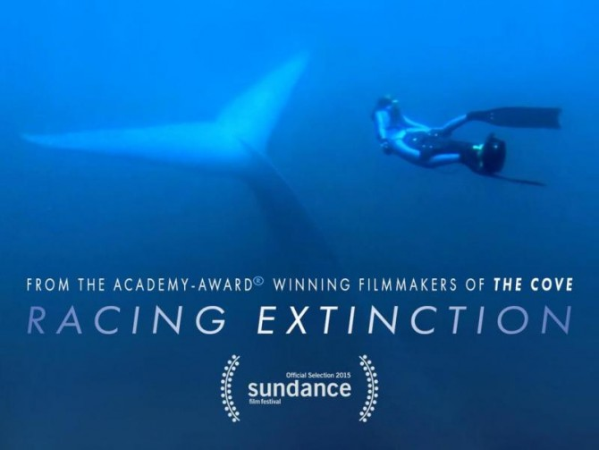 Racing Extinction (whsredandblack)