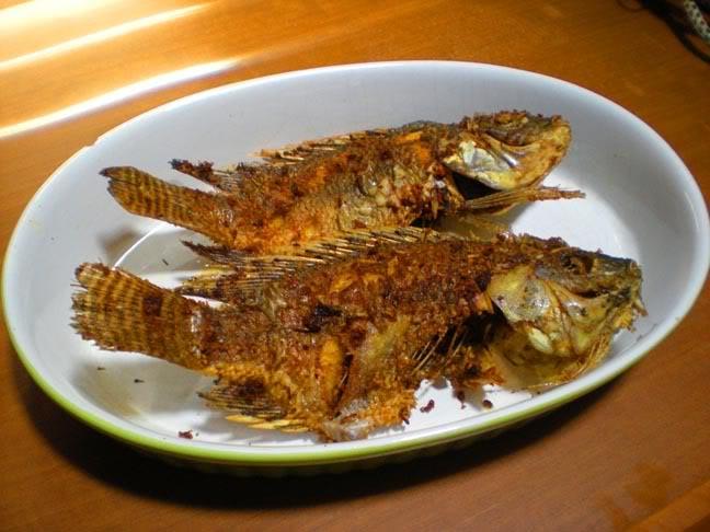 Ikan mujair (Sooperboy)