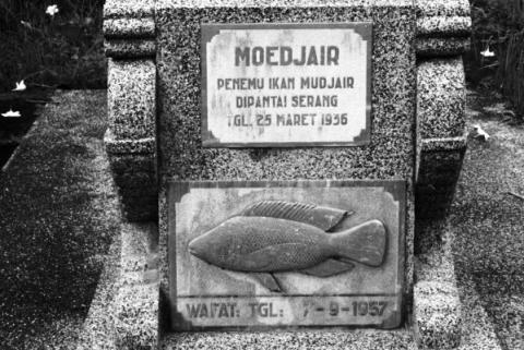 Makam Mbah Moedjair (Sooperboy)