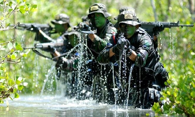 Militer Indonesia (Beritadaerah)