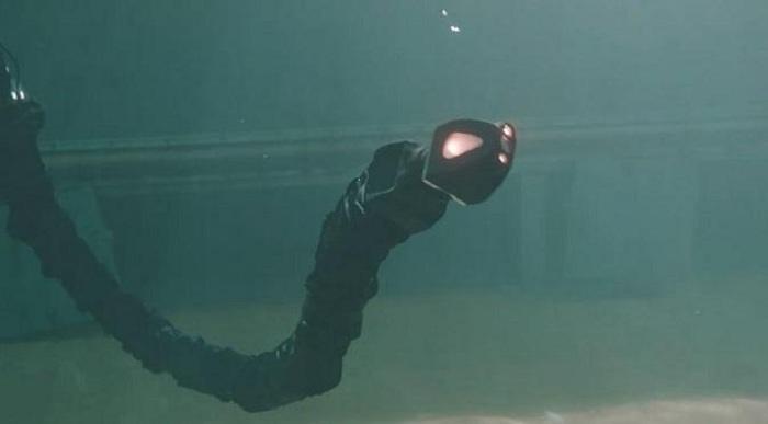 Diciptakan Robot Ular yang Bisa Menyelam dalam Air