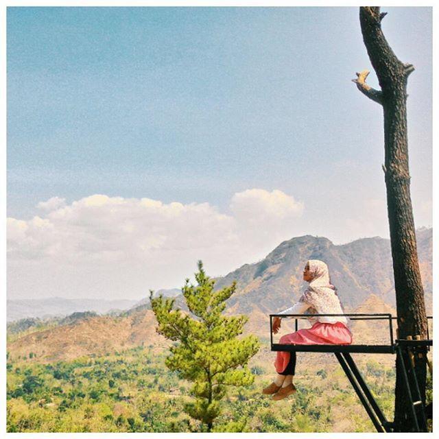 Inilah Rumah Pohon di Gunung Beruk Ponorogo yang Jadi Berita