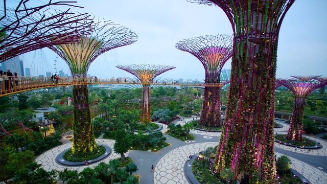 Gardens By The Bay (www.expedia.com)