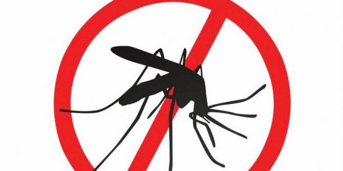 Ilustrasi anti nyamuk DBD (Kompas)