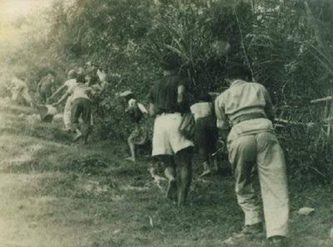 Gerilyawan (Kaskus)