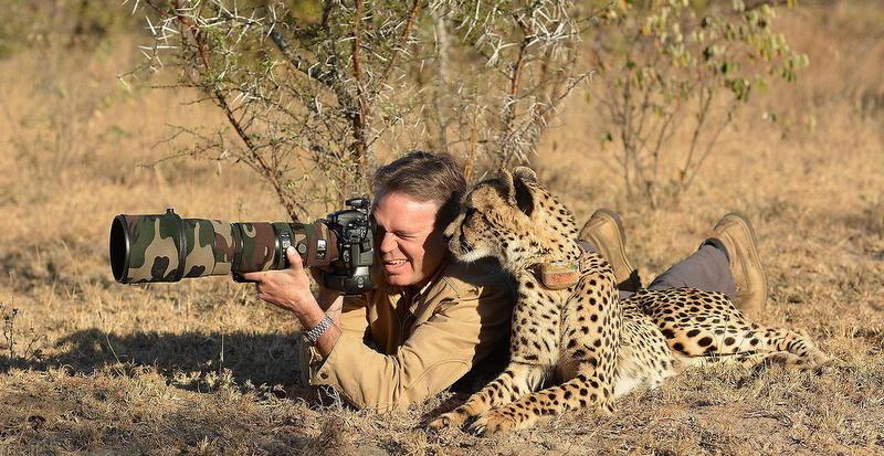 Teknik Fotografi Wildlife Photography