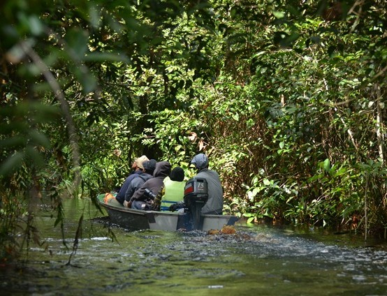Naik Speedboat Menyusuri Sungai Koran di Taman Nasional Sebangau (www.tnsebangau.com)