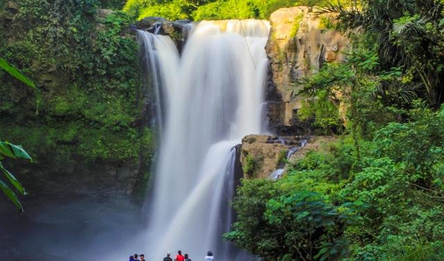 Bungee Jumping Desa Blangsinga (tempatwisatadibali.id)