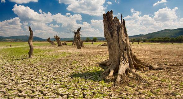 Global warming karena pembabatan hutan (www.compost-wips.be)