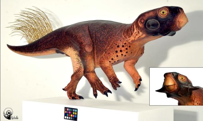 Hasil rekonstruksi Psittacosaurus (Brobible)