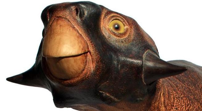 Hasil rekonstruksi Psittacosaurus (Comicbook)