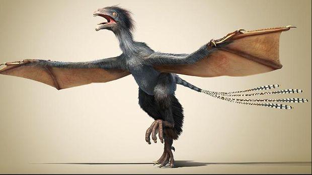 Ilustrasi dari temuan fosil dinosaurus bersayap di Tiongkok (Dinostar)