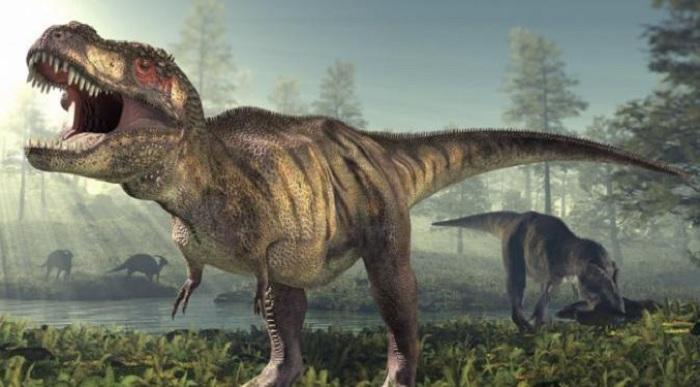 Jauh dari Sangar, Dinosaurus Ternyata Punya Suara Mirip Burung