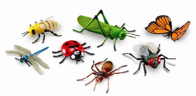 Mainan serangga (Anehdidunia)