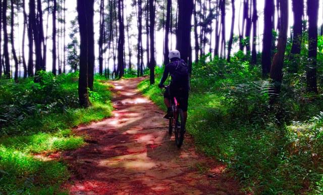 Bersepeda di Gunung Pancar-Sentul (gizanherbal.files.wordpress.com)