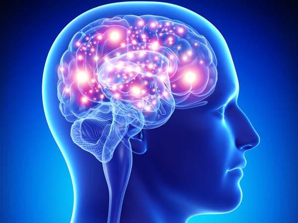 Otak Bergenerasi dengan Baik (uphe.org)