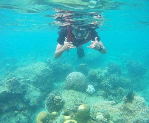Snorkeling di Pulau Semak Daun (instagram.com)
