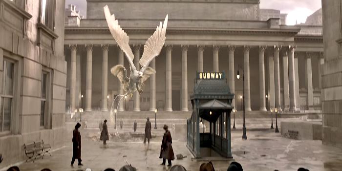 Mengenal Hewan-hewan Ajaib dalam Film Fantastic Beasts