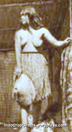Suku Lingon (Indocropcircles)