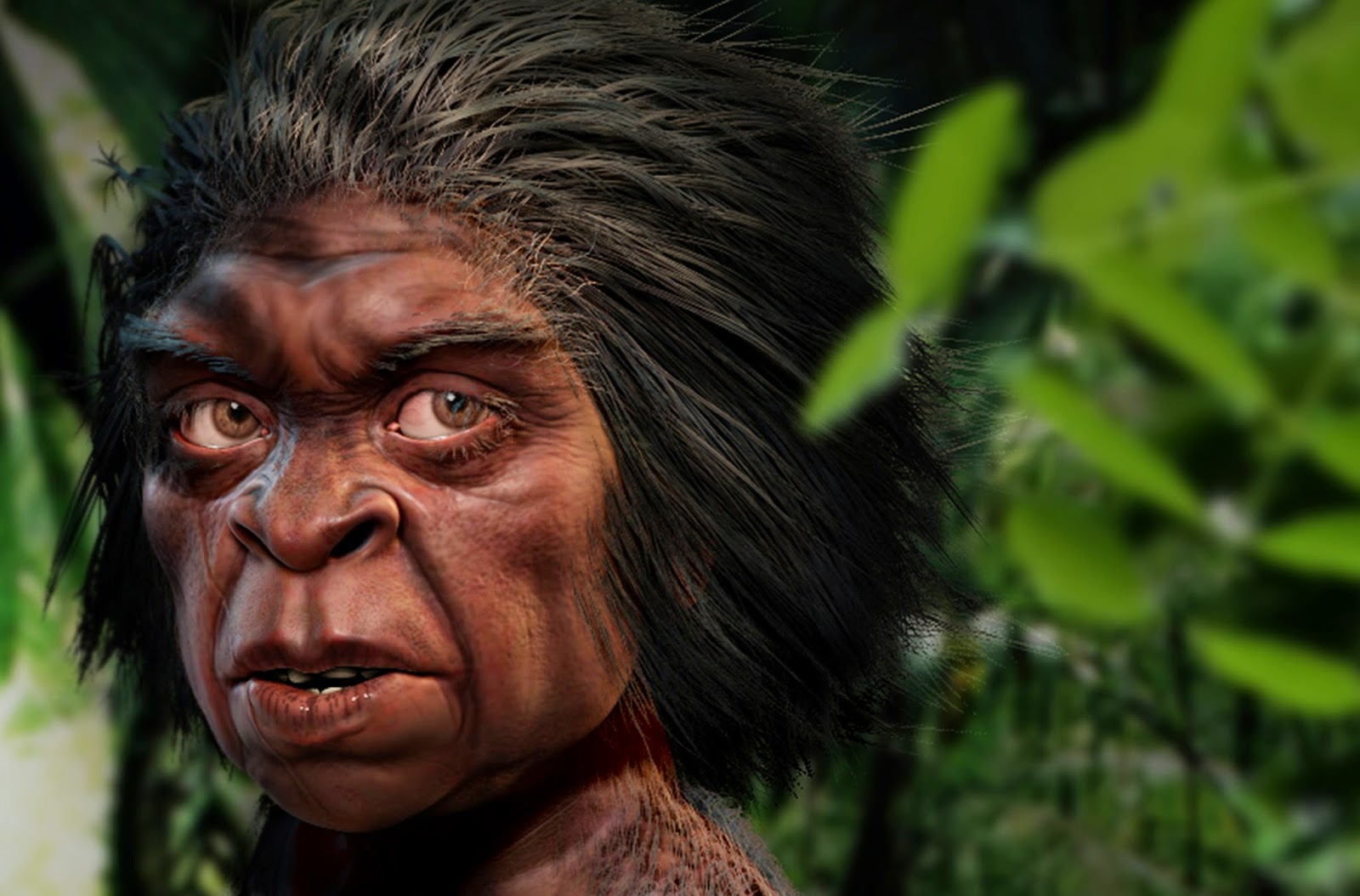 Mengenal Manusia Kerdil 'Hobbit' Nyata di Dunia yang Berasal dari Indonesia