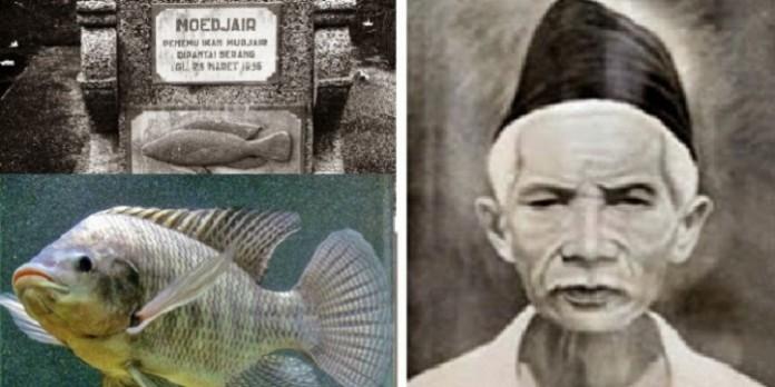 Mbah Mudjair, Sang Penemu Ikan Mujair