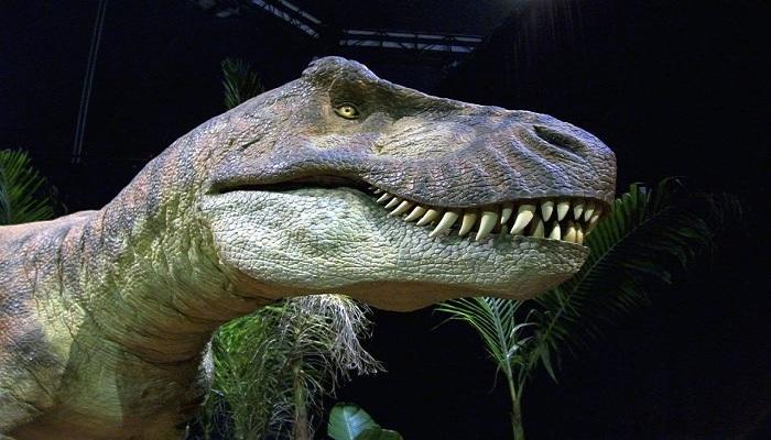 Ditemukan Spesies Baru Dinosaurus yang Masih 'Sepupu' T-Rex