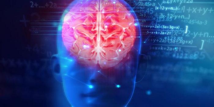 Ini yang Terjadi Pada Otak Saat Kita Berpuasa
