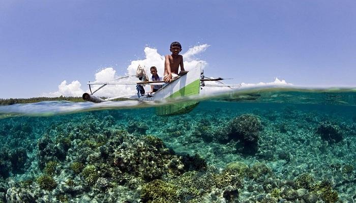 Menjelajahi 5 Spot Diving Sulawesi yang Jadi Surganya Bawah Laut