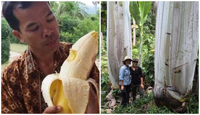 5 Buah Ajaib Berkhasiat yang Cuma Ada di Papua