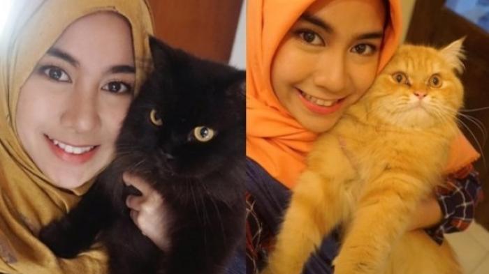 5 Seleb Cantik yang Pelihara Kucing Imut dan Lucu