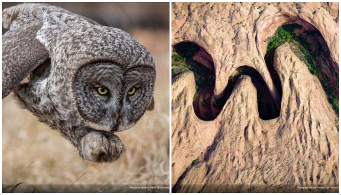 Tanpa Photoshop, Foto-foto Keren Tentang Alam Ini Jadi Pemenang Ajang Kompetisi National Geographic 2017