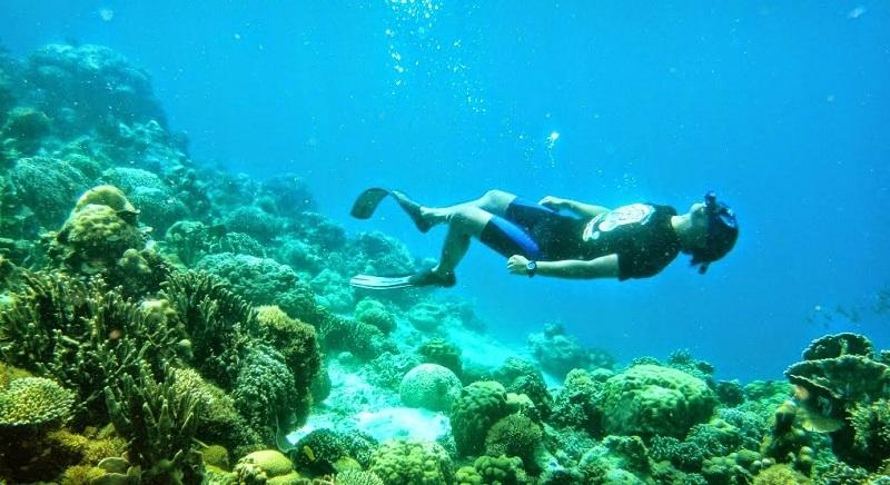 Menjelajahi Alam Bawah Laut Pulau Kapoposang, Spot Diving Tercantik di Sulawesi Selatan